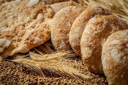 Trotnerhof Urlaub auf dem Bauernhof Bäcker Oberbozen Ritten Südtirol Bio Brot Handarbeit Tradition
