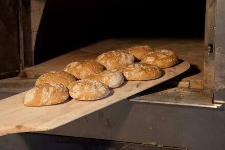 Trotnerhof Urlaub auf dem Bauernhof Hofbäckerei Oberbozen Ritten Südtirol Tradition Bio Brot